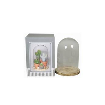 D CLOCHE VERRE D12 H21 SOCLE NATUREL